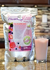 MegaOne Berry Meal Replacement Shake Powder - All Natural Raw Vegan / Vegetarian Protein - Energy, Diet Weight Loss, Hiking, Camping, Emergency Supply (1 Pouch)
