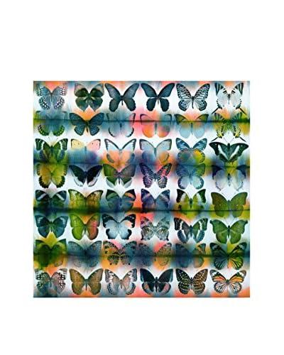 Parvez Taj Butterflies Squared Canvas Wall Art