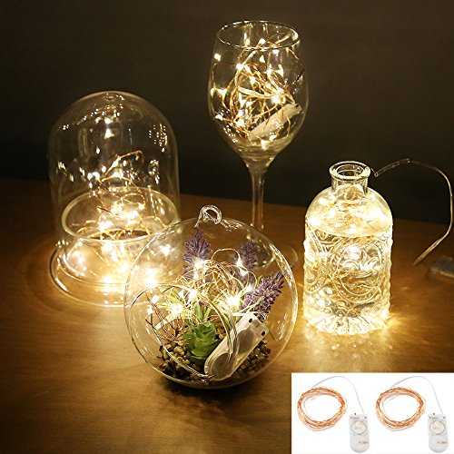 Accmor-Led-Starry-String-Lights-Firefly-Outdoor-Lights-Seasonal-Indoor-Lights-Decoration-Waterproof-Cooper-Lights-Battery-Operated-Portable-LightsWarm-White-787ft-Set-of-2