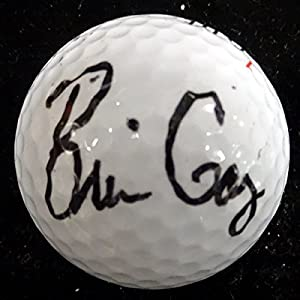 Brian Gay Autographed Top Flite Golf Ball PSA DNA #Q18958