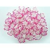 フラワーシャワー◆ファンシー花びら 桜(外ぼかし)(約60枚) ピンク