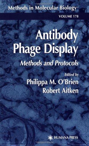 Antibody Phage Display press here