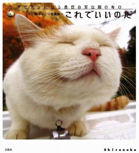 これでいいのだ かご猫ほっこり写真集