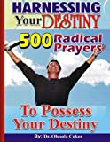 img - for HARNESSING Your DESTINY: 500 Radical Prayers to possess Your Destiny book / textbook / text book