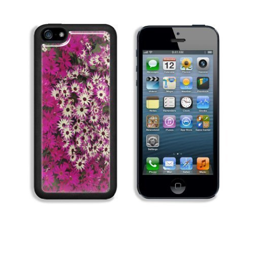 MMZ DIY PHONE CASEPurple and White Hybrid Daisies Apple iphone 5/5s Snap Cover Case Customized Made to Order Support Ready Premium Aluminium Deluxe Aluminium 5 inch (125mm) x 2 3/8 inch (62mm) x 3/8 inch (12mm) Liil iphone 5/5s Professional Cases Touch Accessories Graphic Covers Designed Model Folio Sleeve HD Template Designed Wallpaper Photo Jacket Wifi 16gb 32gb 64gb Luxury Protector Wireless Cellphone Cell Phone