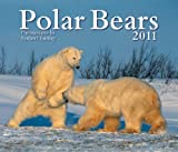 Polar Bears 2011 Calendar