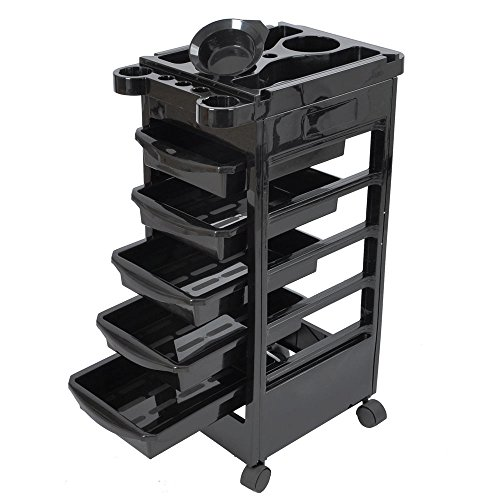 Salon SPA Trolley Storage Cart Coloring Beauty Salon Rollabout Hair Dryer Holder (Bowl Hair Dryer compare prices)