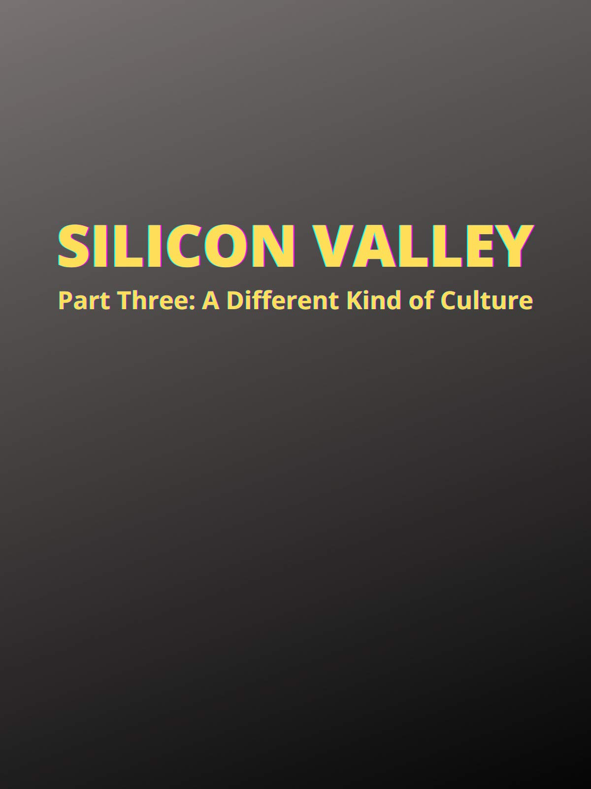 Silicon Valley: Part Three, A Different Kind of Culture