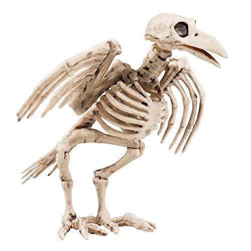 Skelett Dungeons Vogelskelett Tierskelett Halloweendeko Horror