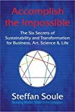 Steffan Soule Accomplish The Impossible: The Six Secrets of Sustainability and Transformation for Business, Art, Science & Life: Revealing Wisdom Hidden in the Enneagram