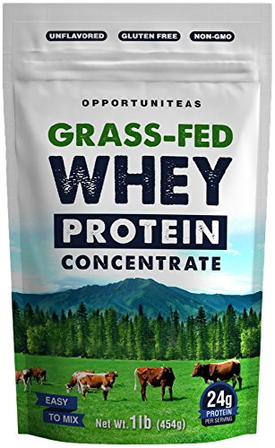 Grass Fed Whey Protein Powder Concentrate | Natural and Unflavored | Non GMO and Gluten Free