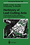 Herbivory of Leaf-Cutting Ants: A Case Study on Atta colombica in the Tropical Rainforest of Panama (Ecological Studies)