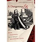 A Dangerous Stir: Fear, Paranoia, and the Making of Reconstruction (Civil War America) ~ Mark W. Summers