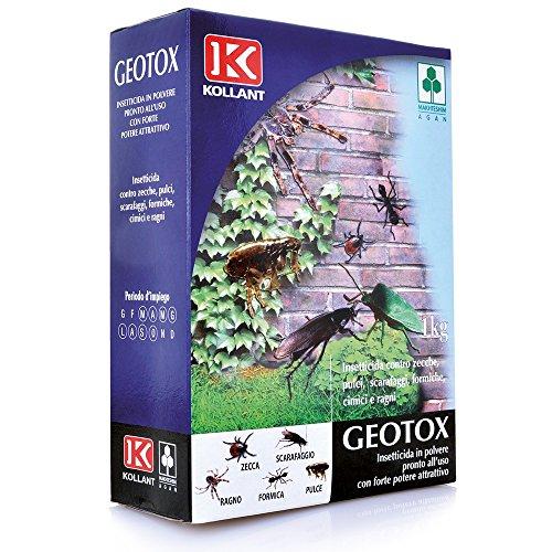 insetticida-in-polvere-geotox-kollant-da-kg-1-contro-zecche-pulci-scarafaggi-formiche-cimici-e-ragni