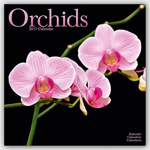 orchids-calendar-2017