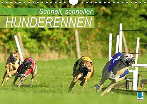 schnell-schneller-hunderennen-wandkalender-2017-din-a4-quer-windhunde-rennpferde-fur-hundeliebhaber-