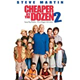 Cheaper By The Dozen 2 ~ Steve Martin