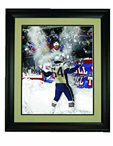 New England Patriots- Tedy Bruschi Snow Bowl Framed 16x 20 Photo by Champion