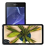 MSD Premium Sony Xperia Z2 Aluminum Backplate Bumper Snap Case IMAGE ID 35382118 top view bouquet of orange tulips in vase isolated