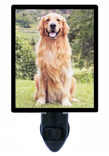 Dog Night Light - Golden Retriever - Pet Led Night Light front-996145
