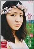 ��ë��� in �̳�ƻ [DVD]