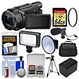Sony Handycam FDR-AX53 Wi-Fi 4K Ultra HD Video Camera Camcorder with 64GB Card + Case + Video Light + Battery + Tripod + Mic Kit