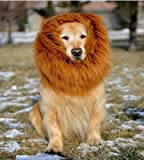 かわいいペットがライオンに変身!立派なタテガミで周りも驚く 愛犬 愛猫 コスプレ グッズ TPE-03 (愛犬用 LL)