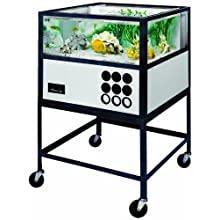 American Educational Oceanic Saltwater Aquarium with Stand, 55 Gallon Capacity, Glass
