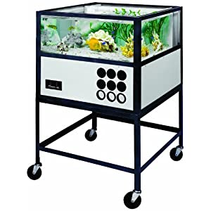 American Educational Oceanic Saltwater Aquarium with Stand, 55 Gallon