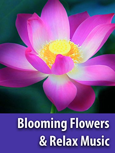 Stunning Blooming Flowers & Relax Music - Screen Saver