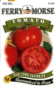 Cherry Tomato Seeds - Heirloom Varieties | Johnny's ...