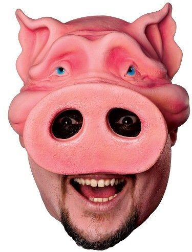 Rubie's Costume Co Pig Boy Chinless Mask Costume
