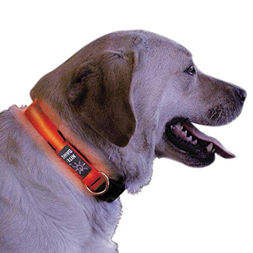 Nite Ize Small Red LED Flexible Strong Nylon Dog Collar  NND