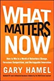 img - for What Matters Now: How to Win in a World of Relentless Change, Ferocious Competition, and Unstoppable Innovation by Hamel, Gary (2012) book / textbook / text book