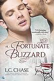 A Fortunate Blizzard (English Edition)