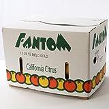 グレープフルーツ 『メロゴールド』 大玉27玉入り カリフォルニア産 ランキングお取り寄せ