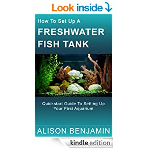 How to set up a freshwater fish tank for How to set up fish tank