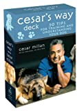 Cesars Way Deck: 50 Tips for Training and Understanding Your Dog