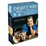 Cesar's Way Deck: 50 Tips for Training and Understanding Your Dogby Cesar Millan