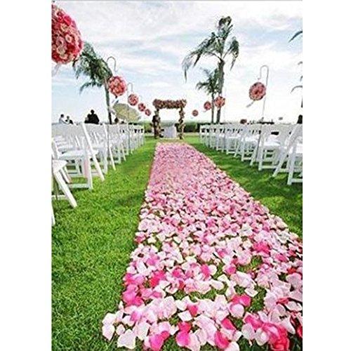 Topteck 2000 pétales de rose rouge pétales de fleurs éparpillés mariage décoration Argent