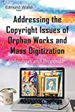 img - for Addressing the Copyright Issues of Orphan Works and Mass Digitization: Analyses and Proposals (Intellectual Property in the 21st Century) book / textbook / text book