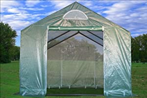 Greenhouse 10'x10' - Large Heavy Duty Green House Walk in Hot House By DELTA Canopies