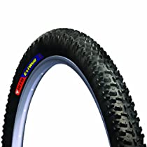 WTB EXI Wolf Cross Country Mountain Bike Tire (26x2.1, Folding Race, Black)