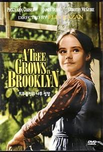 A Tree Grows In Brooklyn (1945) All Region DVD (Region 1,2,3,4,5,6 Compatible)
