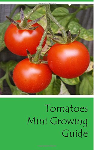 tomatoes-mini-growing-guide