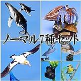ネイチャーテクニカラー 小笠原 【ノーマル7種セット】