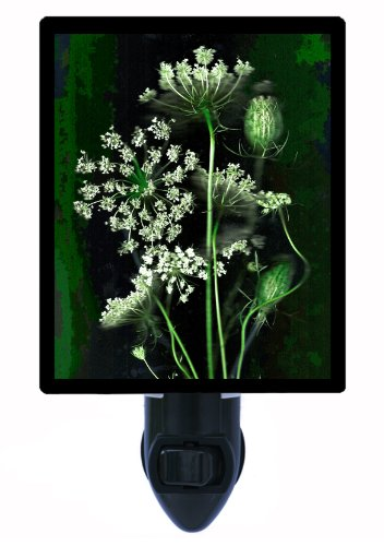 Floral Night Light - Queen Anne'S Lace - Flower - Led Night Light