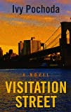 Visitation Street (Thorndike Press Large Print Basic Series)