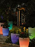 Solar Illuminated Planter, Tall