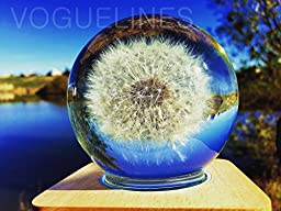 Handmade - Real Dandelion Floating in Crystal Ball - Touch Control Lighting (Night Light) - Home / Office Decor Birthday Gifts Price